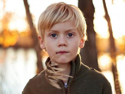 3 главные условия развития ребенка