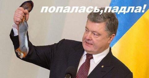 Порошенко выступил с предупр…