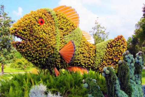 Невероятные растительные скульптуры