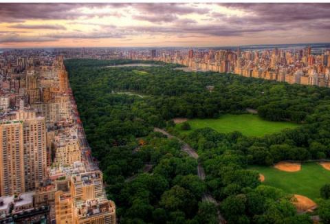 Центральный парк в Нью- Йорке или как из грязи сделать конфетку