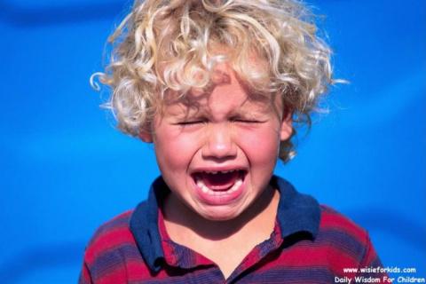 Этот мальчик, плача, подошел…