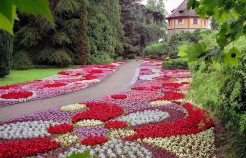 Рисунки на клумбах из цветов…
