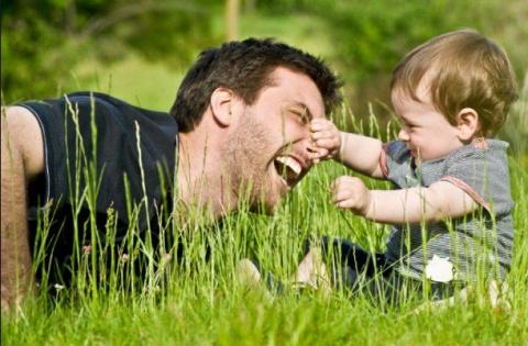 В вашем регионе создан совет отцов?