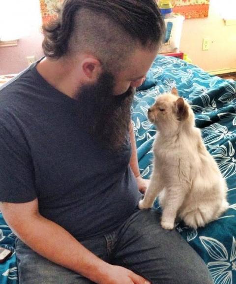 Они взяли из приюта 17-летнюю кошечку и теперь она каждый день показывает им, как она благодарна