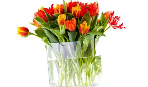 Чтобы букеты цветов дольше нас радовали