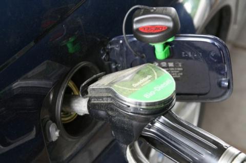 В России снизилась цена на бензин на 1 копейку за литр