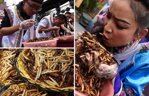 Конкурс по поеданию насекомы…
