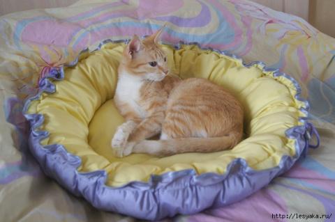 Красивая и простая лежанка для кошки. МК