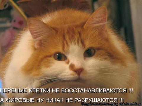 Ирина мамонтова (Петриенко)