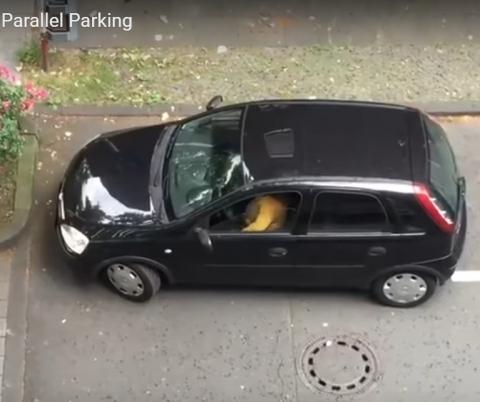 Парковаться 6 минут не каждый сможет!