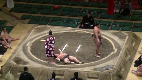 Брутальный глубокий нокаут в сумо