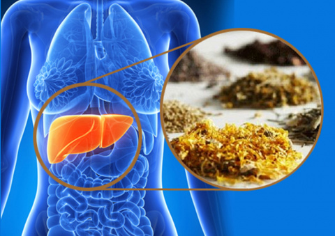 Гепатит – не приговор! Как может помочь народная медицина