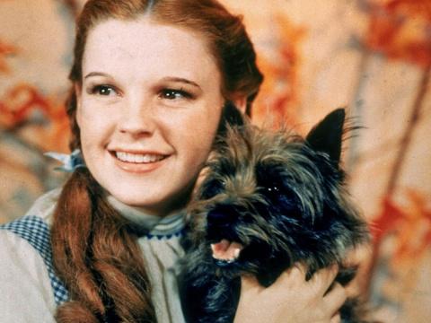Джуди Гарленд – девочка, «за…