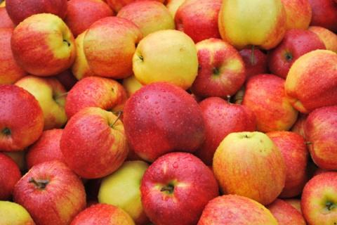 Яблоки. Оригинальные рецепты…