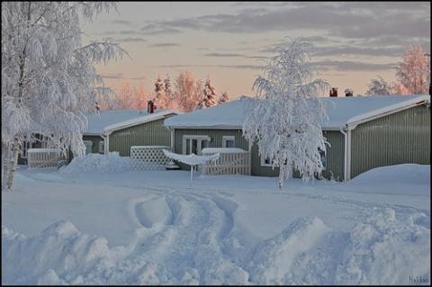 20 января - Всемирный день снега.