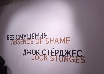 В Общественной палате осудили повторное открытие выставки Джока Стёрджеса