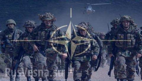 Роспуск НАТО стал бы благом для мира, — Freitag
