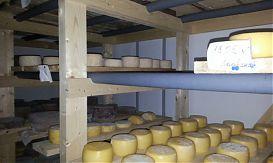 «Ладвинская сыроварня» построит третий по счету завод в Карелии