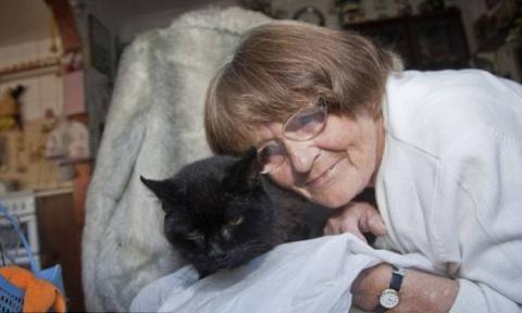 Кола - Самая старая кошка в мире