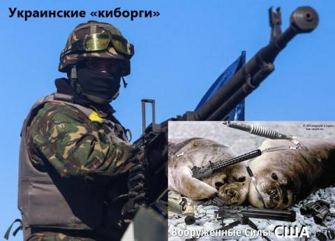 Украинские «киборги» убили в…