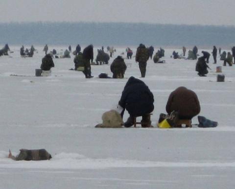 1437. Рыбаки следуют примеру…