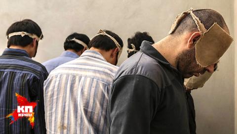 """"""" Вера, прости меня за джихад"""""""