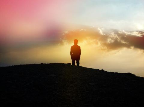 Укрощение амигдалы: как боро…