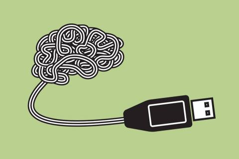 Мозг, издание дополненное