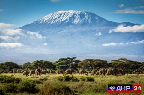 Альпинисты из ДНР развернули флаг Республики на вершине Килиманджаро