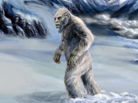 Снежный человек в Карелии