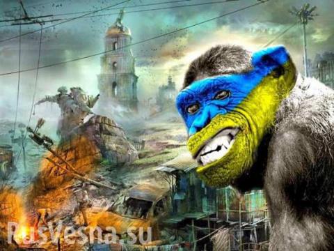 Дрессированные обезьяны украинства
