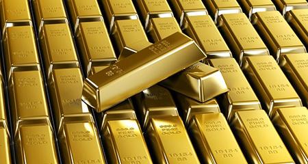 Карельское золото. Те самые «инвестиции в человека»