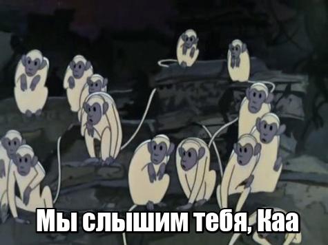 Пресс-конференция Путина вош…
