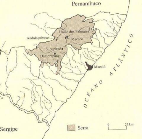 Палмарис. Лесная республика …