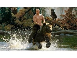 Трамп уйдет, а медведь с драконом останутся