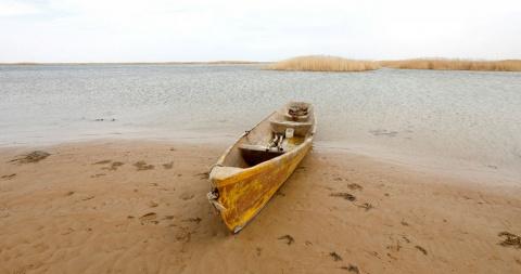 В Аральское море вернулась вода: как возрождают солёное озеро в Казахстане