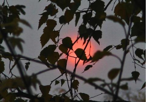 Красное солнце с утра удивило жителей Южной Финляндии