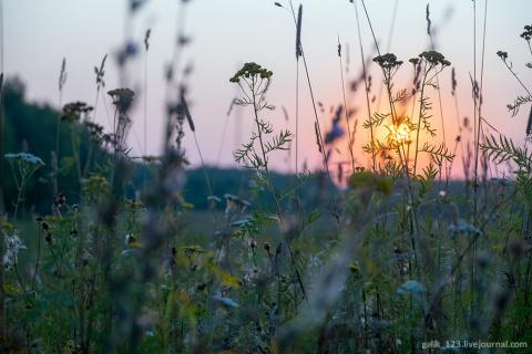 Восход солнца по дороге домой