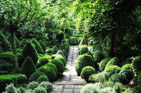 Топиарные сады