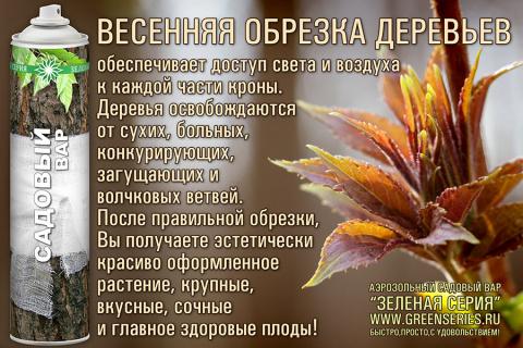 садовый вар аэрозольный, деревья после прививки, аэрозоль садовый вар для ухода за растен, садовый вар аэрозоль, для растений, аэрозоль для ухода за растениями, обрезка деревьев, зеленая серия аэрозоль, привой, как прививать яблоню, лечение деревьев, аэрозоль для растений, вар садовый, привой сливы, садовый вар для сада, обрезка деревьев весной, Зеленая серия, деревья в саду, прививаем яблоню, уход за растениями, деревья плодовые, чем обработать срез, привой яблони, деревья для сада, болезни растений, садовый вар, состав садового вара, подвой, консерватор для, садовый вар замена
