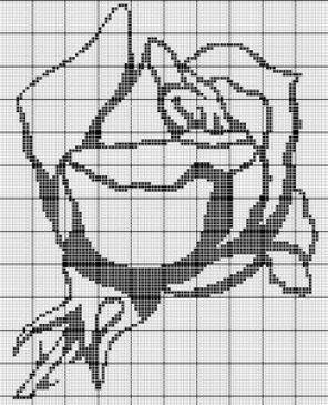 Роза монохром