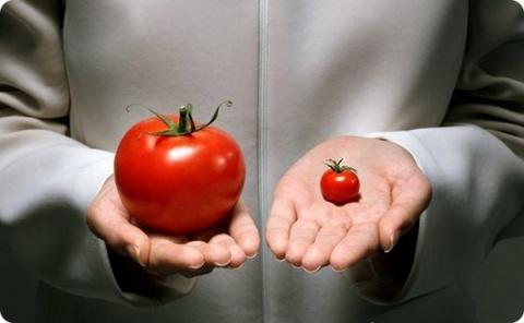 Какие у противников ГМО проб…