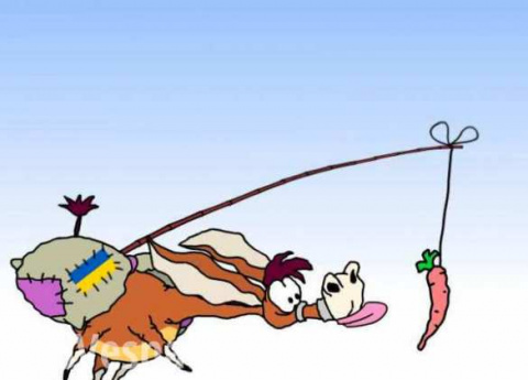 «Морковка на веревочке», — в МИД РФ прокомментировали украинский «безвиз»