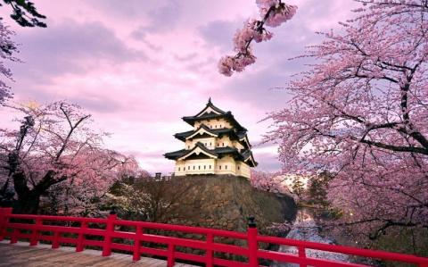 Япония будет использовать новый способ привлечения туристов