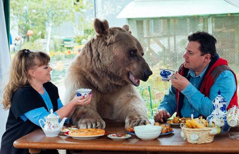 Самый удивительный питомец в мире: медведь Степан живет с людьми в одном доме более 20 лет