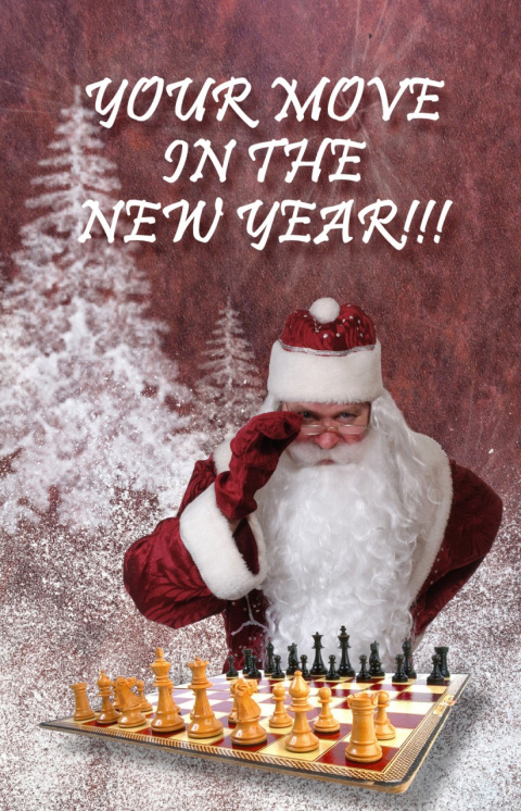 Поздравляю всех с Новым годом!!!