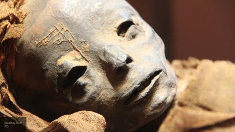 Пол египетской мумии из Эрмитажа вычисляют с помощью томографа