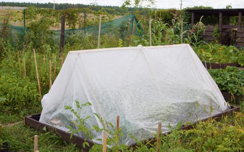 Как сделать легкое укрытие для растений. Мастер-класс
