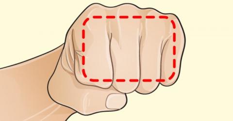 Диета «на пальцах», которая поможет сбросить вес всем желающим!