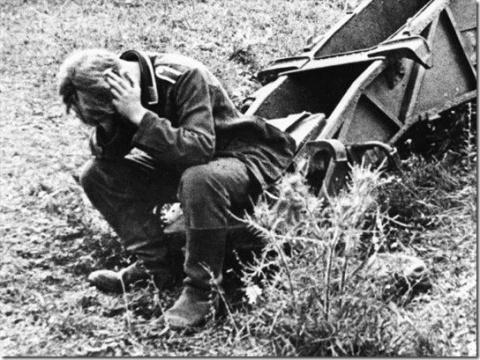 Сколько гитлеровцев осталось лежать в советской земле